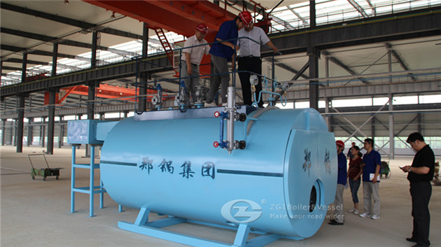 Gas fired boiler for biscuits company image