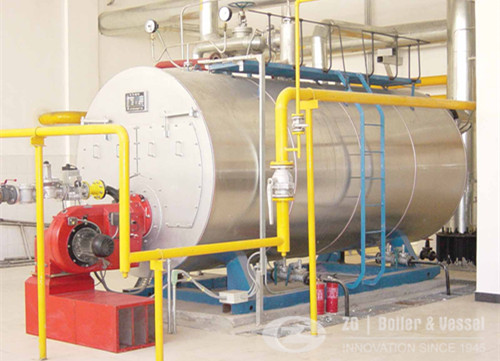 horizontal boilers for pharmaceutical industry image