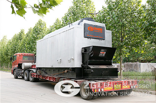 Pet food factory steam boiler
