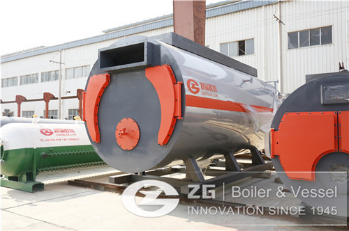 3 T natural gas boiler for food  image