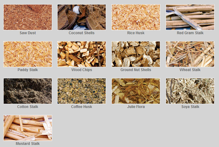 biomass fuel types