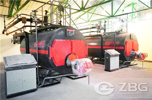 wns oil gas boiler for greenhouse heating