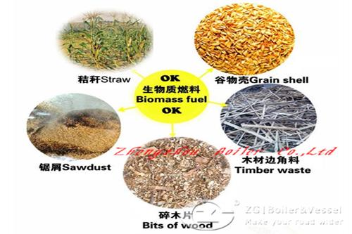 biomass fuels boiler