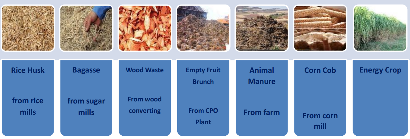 Biomass = Clean Energy Source.png