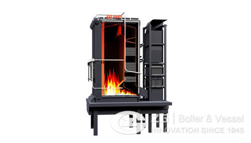 25 T biomass boiler for food factory