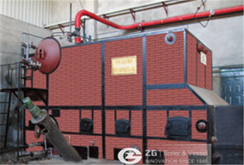 DHL biomass hot water boiler image