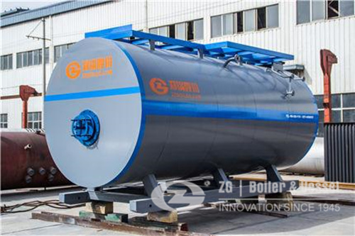 WNS horizontal gas fired steam boiler image